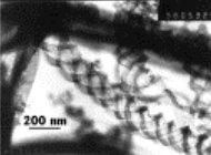 Трансмиссионная электронная микроскопия